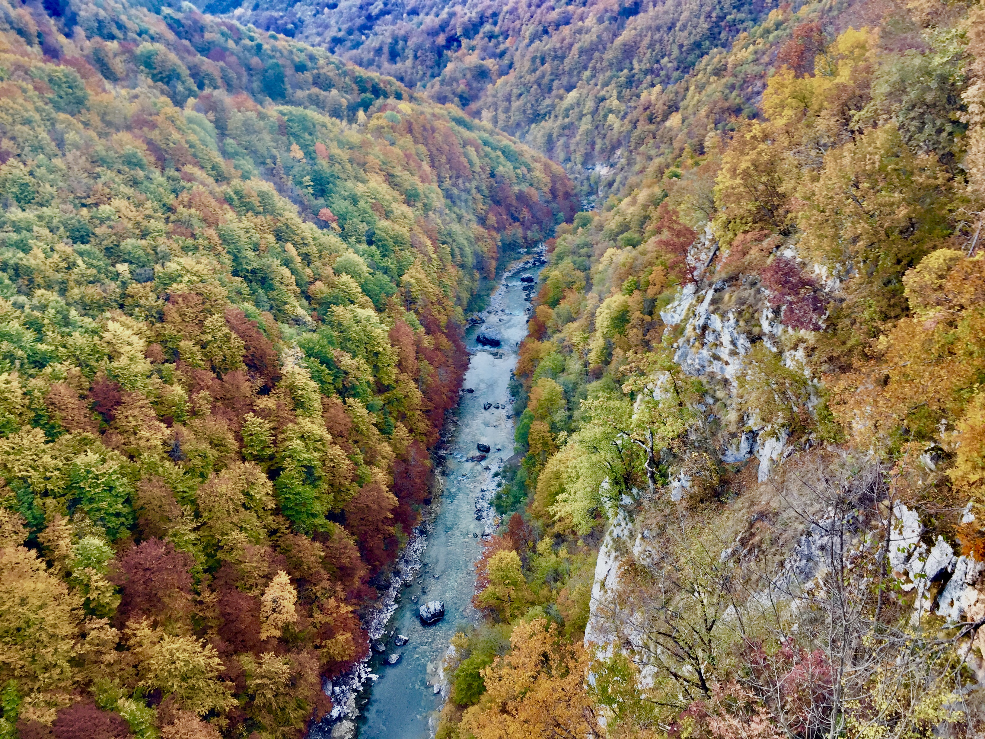Alltagsträumer - Montenegro - Tara Bridge