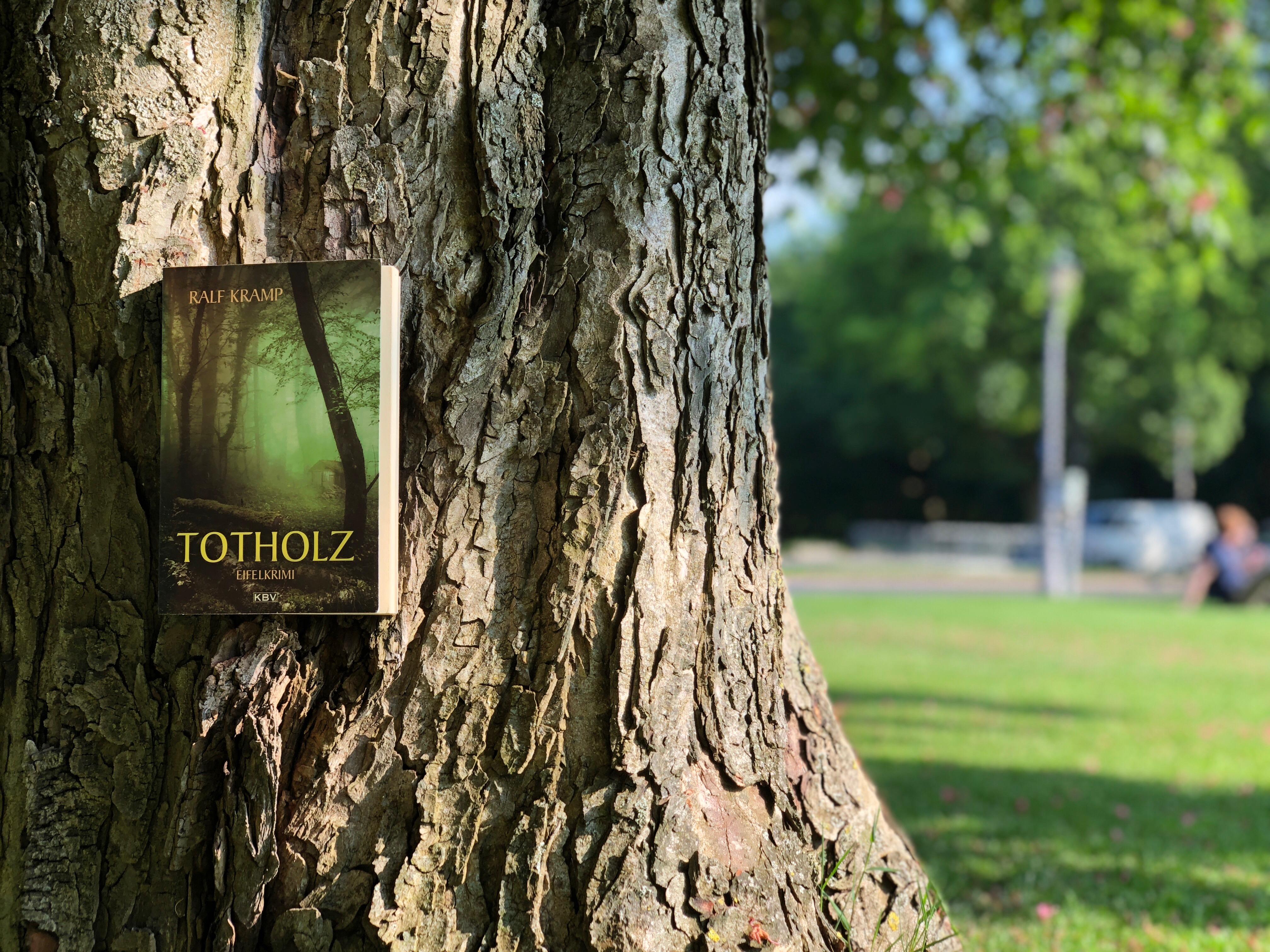 Alltagsträumer - Totholz